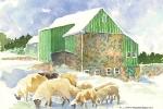 Anne\'s Sheep