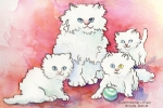 Cats-White Persian