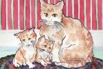 Cats-Yellow Tabby