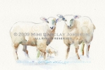 Together-Sheep Family